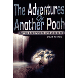 The Adventures of Another Pooh