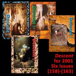 Descent set for 2001