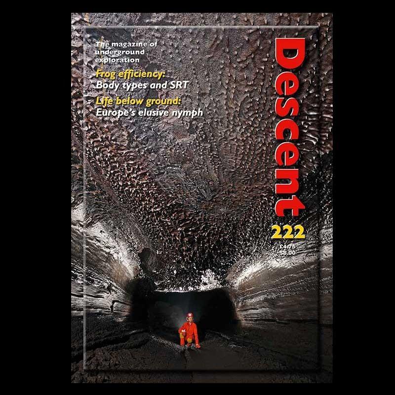 Descent (222)