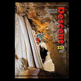 Descent (221)