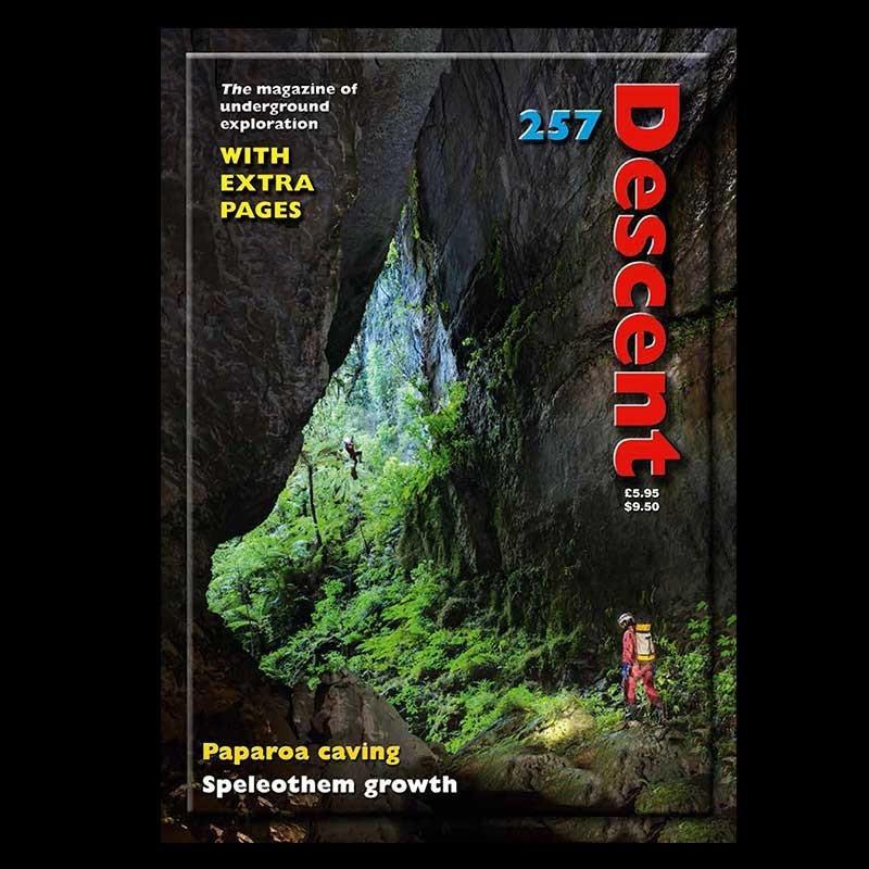 Descent (257)
