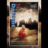 Descent (164)