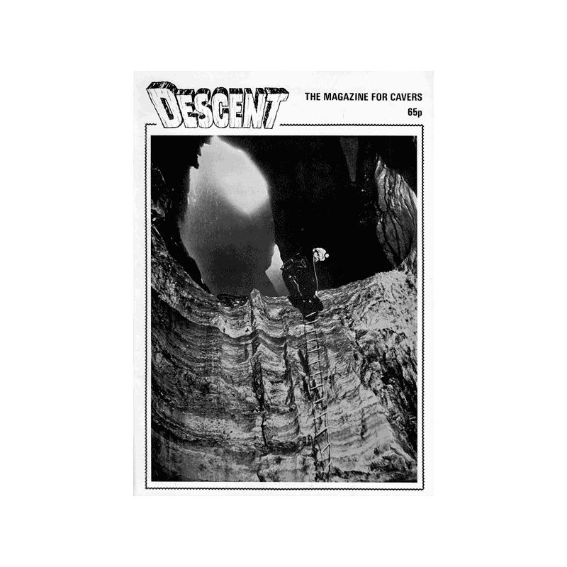 Descent (43)