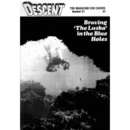 Descent (51)