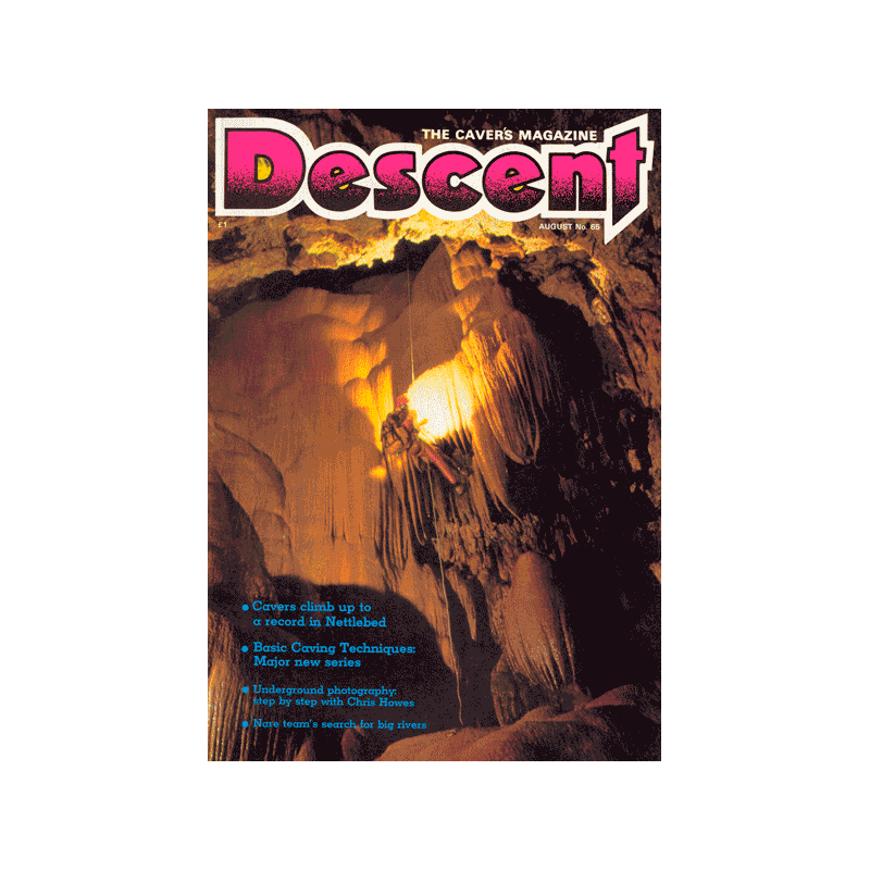 Descent (65)