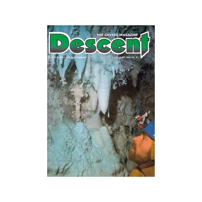 Descent (81)