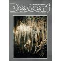 Descent (87)