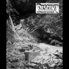 Descent (31)